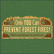 ONLY YOU CAN PREVENT FOREST FIRES! - WHICH IS GOOD BECAUSE I'VE GOT SHIT TO DO